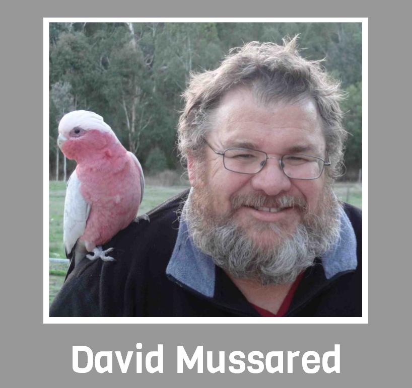 David Mussared - Profile