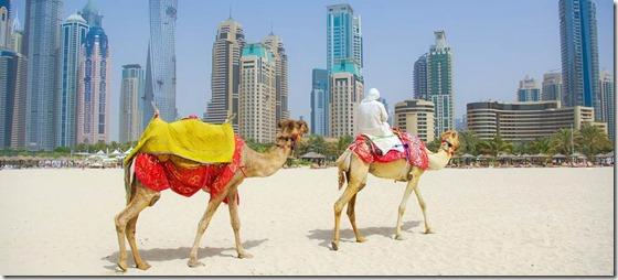 Middle-East-UAE : Recruit in UAE